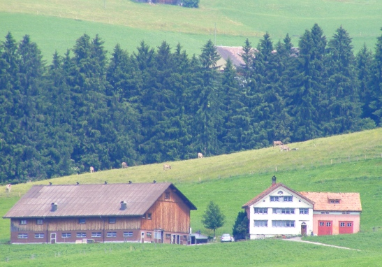 Swiss Farm