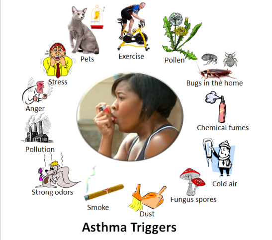 Asthma_triggers_2