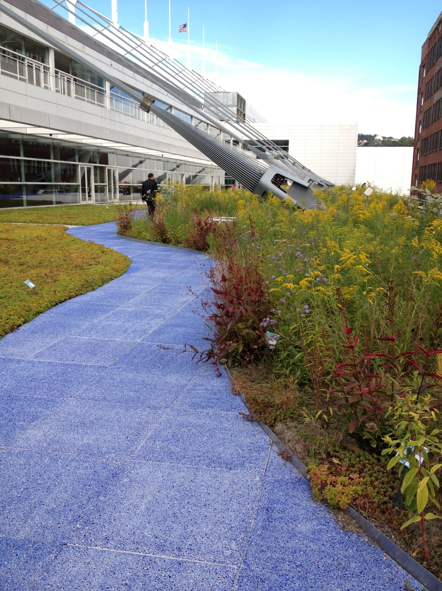 Green Roofs Pittsburgh Convention Center Uga Greenway News