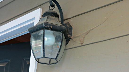 cobwebs lamp