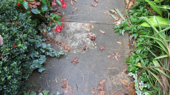 Repair cracked and broken concrete on walkways.
