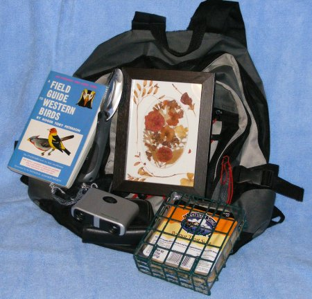 This is for a western friend. It's a backpack filled with my bird id book from a class at the U of Idaho, binoculars, magnifying glass, suet feeder and a picture made out of dried flowers from my garden.
