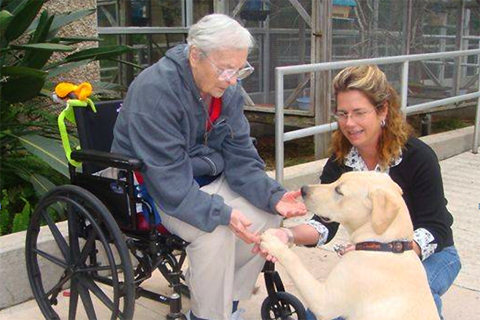 Reach out to others. Visit a nursing home and take your dog with you.